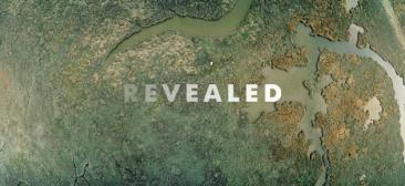 revealed